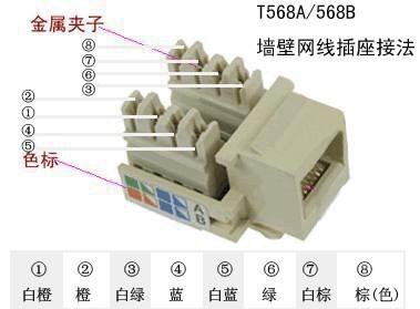 飞雕86型单电脑插座/网线插座/宽带插座怎么接线